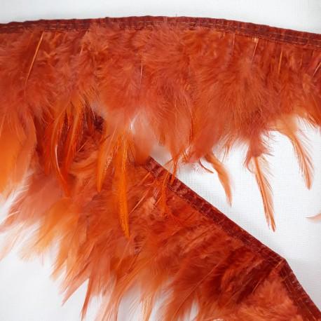 Pióra na taśmie rudy 13cm/1mb nr 3433 - 17879