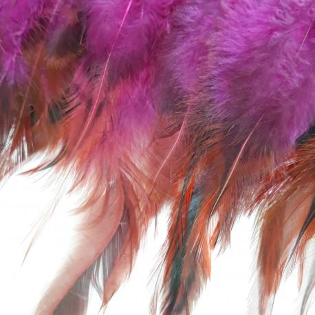 Pióra na taśmie amarant - 17952