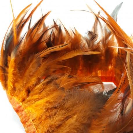 Pióra na taśmie rude - 17995