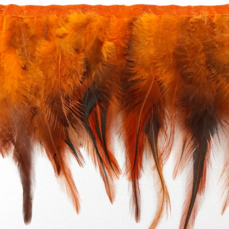 Pióra na taśmie rude - 17999