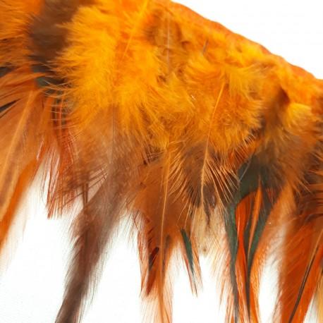 Pióra na taśmie rude - 18000