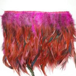 Pióra na taśmie amarant