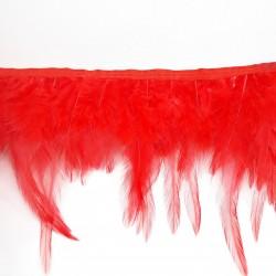 Pióra na taśmie czerwone