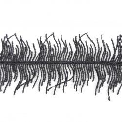 Koronka gipiurowa 40mm 2480